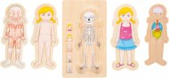 PUZZLE A ETAGES ANATOMIE FILLE SMALL FOOT