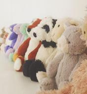 Collection Bashful
